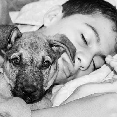 dog and boy (400x400)