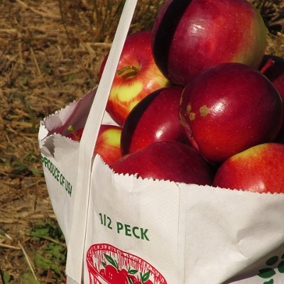 bag of apples (400x400)